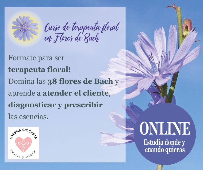 Curso online de terapeuta floral (Flores de Bach)
